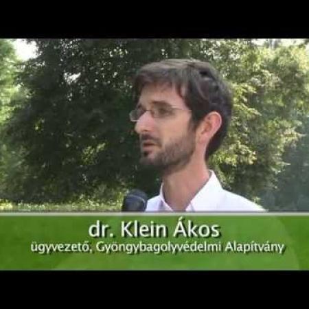 Kommunikáció és karrierépítés a természetvédelemben (ZTV Zöldövezet, 2015. szeptember)